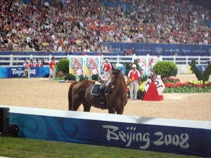 Jamal Ramihov of Azerbaijan ran into trouble at the second last fence. It looked like his horse misjudged the width of the massive oxer and started to paddle. The rider went airborne and was caught up in the horse's legs. Horse was ok.